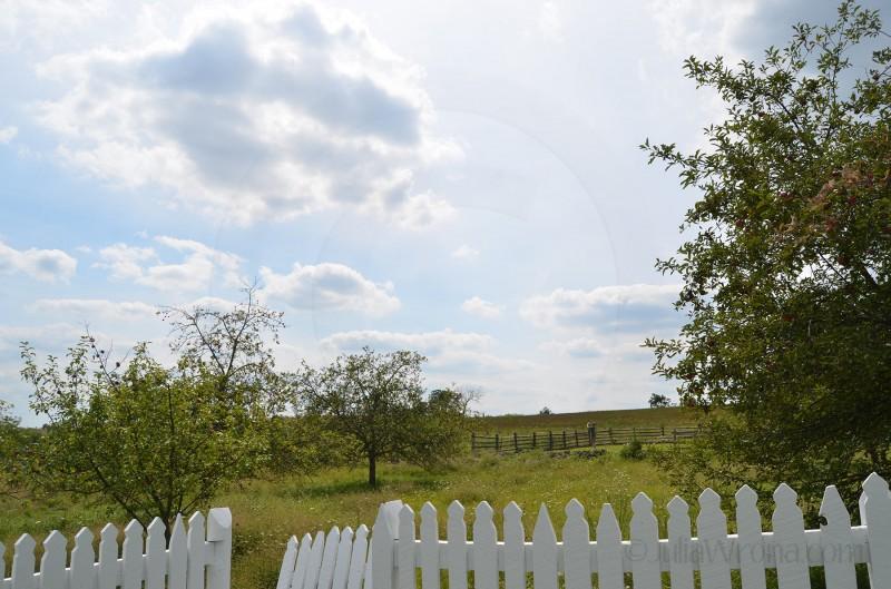 Field Gettysburg, PA