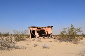 Abandoned and leaning home on the Jack Rabbit Trail