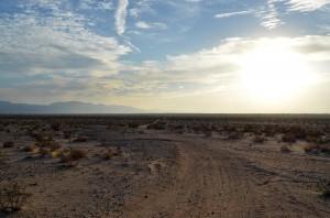 Mojave desert unpaved road