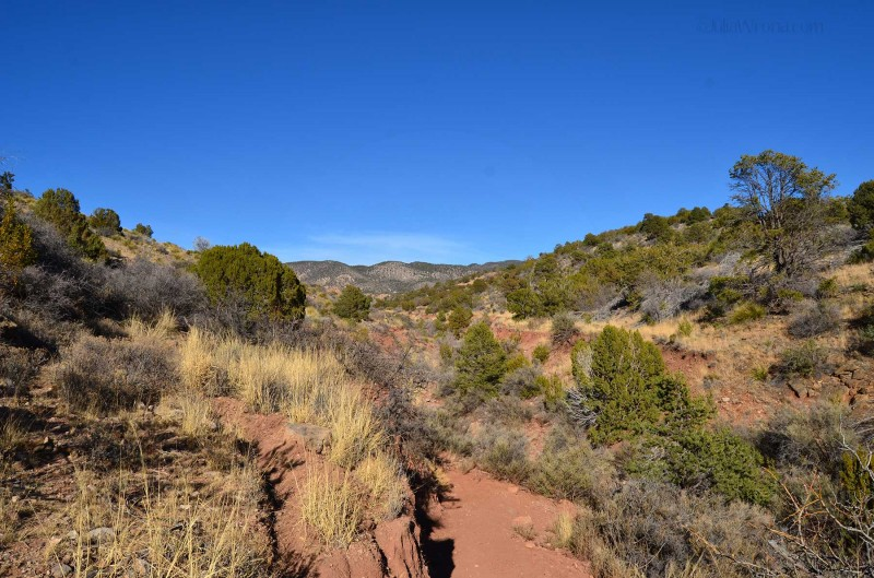 Lincoln National Forest New Mexico