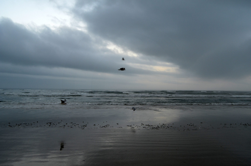 Dreary ocean beach