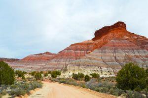 Road through Erosion
