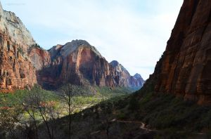 The Shadows of Zion
