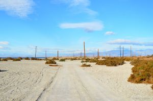 Bombay Beach 03