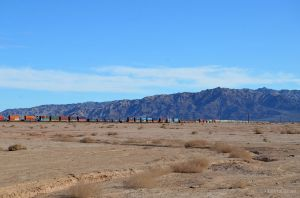 Trains Along the Salton Sea
