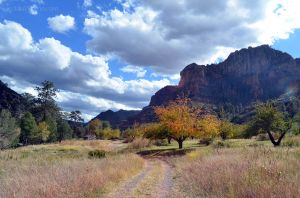 Autumn in Sedona