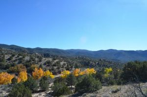 Fall in Northern New Mexico