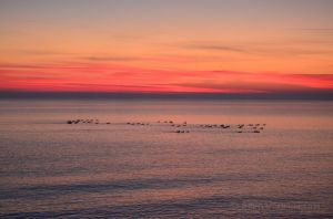 Sunrise Over Lake Superior 01