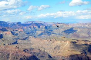 The Grand Canyon 03