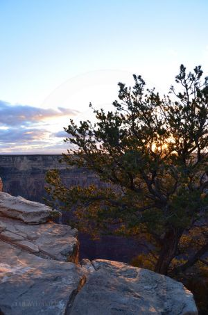 Sunset Over Grand Canyon 02