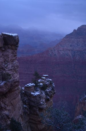 Morning Snow in Grand Canyon
