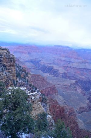 JKW_8211web Cold Morning in Grand Canyon.jpg