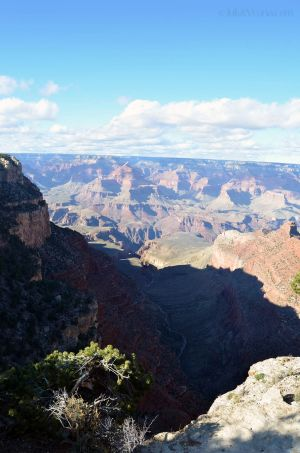 JKW_8450web Looking into Grand Canyon.jpg