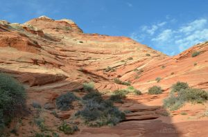 Hiking in Coyote Buttes North