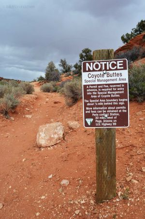 Coyote Buttes Management Area
