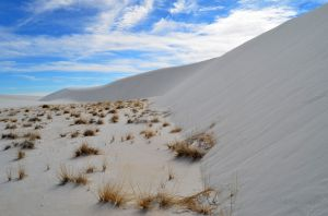 Dune at White Sands