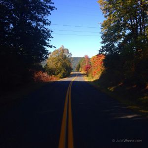 IMG_4870 Road in Fall.JPG