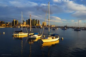 Sailboats in San Diego