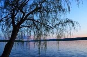 Canandaigua Lake at Sunset 01